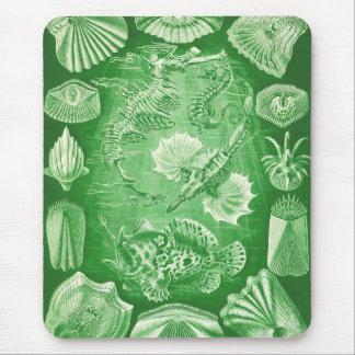 Ernst Haeckel Teleostei Mouse Pad