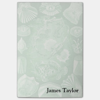 Ernst Haeckel Teleostei Post-it® Notes