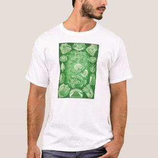 Ernst Haeckel Teleostei T-Shirt