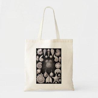 Ernst Haeckel Thalamophora Tote Bag