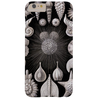 Ernst Haeckel Thalamophora I Barely There iPhone 6 Plus Case
