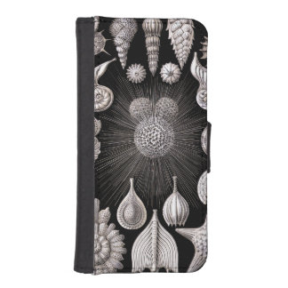 Ernst Haeckel Thalamophora I iPhone SE/5/5s Wallet Case
