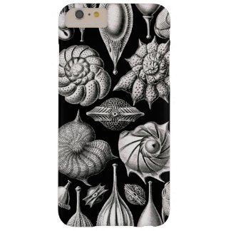 Ernst Haeckel Thalamophora II Funda Barely There iPhone 6 Plus