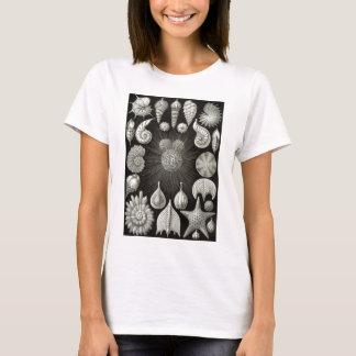 Ernst Haeckel Thalamphora T-Shirt