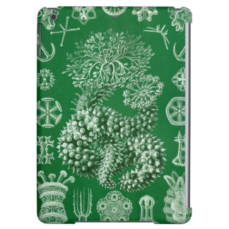 Ernst Haeckel Thuroidea sea cucumber iPad Air Case