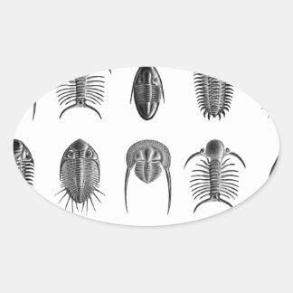 Ernst Haeckel Trilobite Pattern - large Stickers