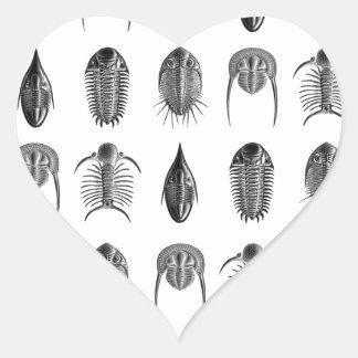 Ernst Haeckel Trilobites fossils pattern - small Stickers