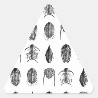 Ernst Haeckel Trilobites & fossils pattern - small Triangle Sticker