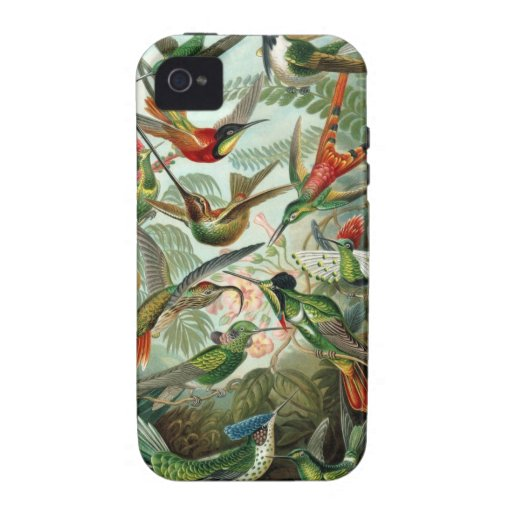 Ernst Haeckel - Trochilidae Case-Mate iPhone 4 Covers
