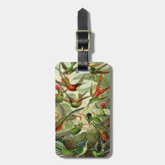 Ernst Haeckel Trochilidae Hummingbird Bag Tag