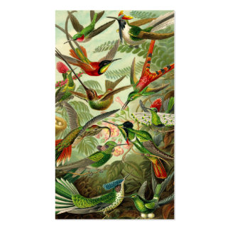 Ernst Haeckel Trochilidae Hummingbird Business Card