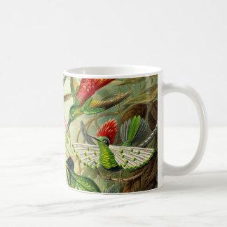 Ernst Haeckel Trochilidae Hummingbird Coffee Mug