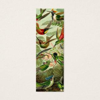 Ernst Haeckel Trochilidae Hummingbird Mini Business Card