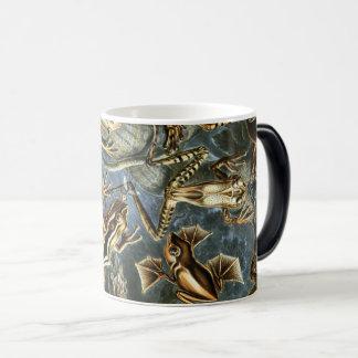 Ernst Haeckel variety of exotic frogs:Batrachia Magic Mug