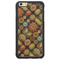 Ernst Haeckel's Actinae Ocean Life Carved Maple iPhone 6 Plus Bumper Case