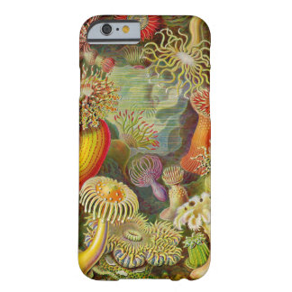 Ernst Haeckel's Actinae Ocean Life Barely There iPhone 6 Case