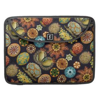 Ernst Haeckel's Ascidiae Ocean Life Sleeve For MacBook Pro