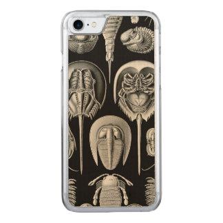 Ernst Haeckel's Aspidonia Carved iPhone 7 Case