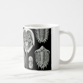 Ernst Haeckel's Aspidonia Coffee Mug