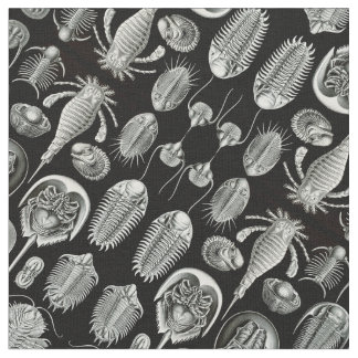 Ernst Haeckel's Aspidonia Fabric