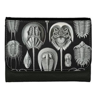 Ernst Haeckel's Aspidonia Leather Wallet For Women
