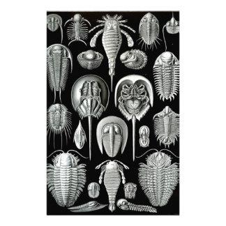 Ernst Haeckel's Aspidonia Stationery