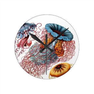 Ernst Haeckel's Disco Medusae Clock