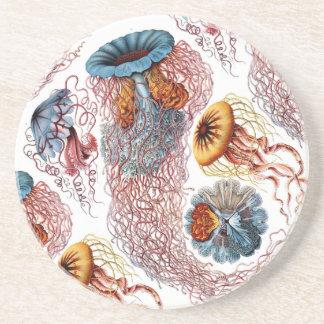 Ernst Haeckel's Disco Medusae Drink Coaster