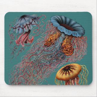 Ernst Haeckel's Disco Medusae Mouse Pad