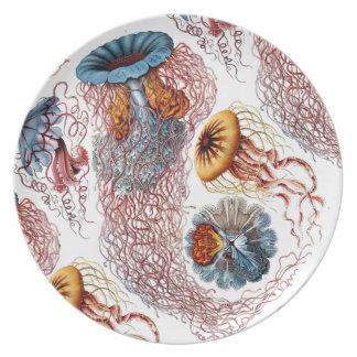 Ernst Haeckel's Disco Medusae Plates