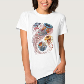 Ernst Haeckel's Disco Medusae T Shirt