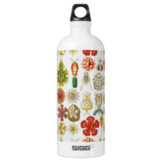 Ernst Haeckel's Oceanic Wonders Aluminum Water Bottle