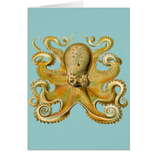 Ernst Haeckel's Octopus Card