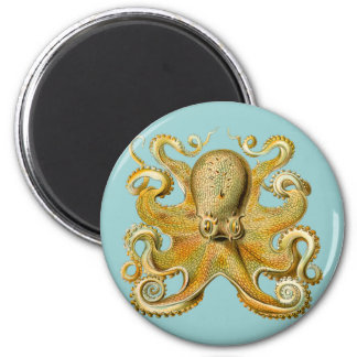 Ernst Haeckel's Octopus Magnet