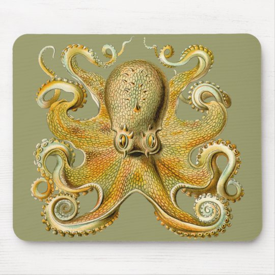 Ernst Haeckel's Octopus Mouse Pad