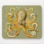 Ernst Haeckel's Octopus Mousepads