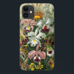 "Ernst Haeckel's Orchidaceae iPhone 11 Case<br><div class=""desc"">Ernst Haeckel (1834-1919) was a German biologist and naturalist among other things. He illustrated over 100 detailed, multi-colour illustrations of animals and sea creatures in a book titled: Kunstformen der Natur (1904). This one is of the Family Orchidaceae with orchids from the Genera Odontoglossum, Oncidium, Cattleya, Cypripedium, Epidendrum, Paphinia, and...</div>"