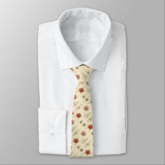 Ernst Haeckel's Radiolarian Necktie