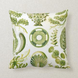 Ernst Haeckel's Siphoneae Seaweed and Algae Throw Pillow