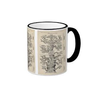 "Ernst Haeckel's ""tree of life"" Coffee Mugs"
