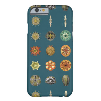Ernst Haeckel's Undersea Jewels Barely There iPhone 6 Case