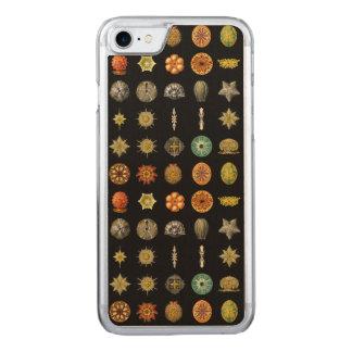 Ernst Haeckel's Undersea Jewels Carved iPhone 7 Case