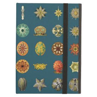 Ernst Haeckel's Undersea Jewels iPad Air Cover