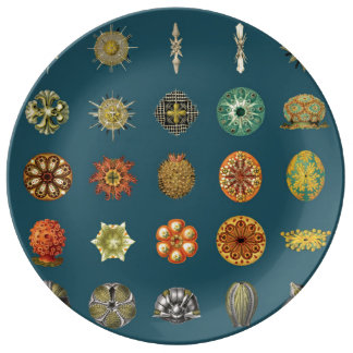 Ernst Haeckel's Undersea Jewels Porcelain Plate