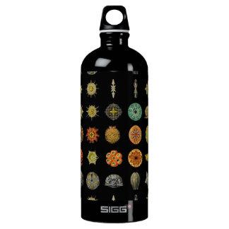 Ernst Haeckel's Undersea Jewels Water Bottle