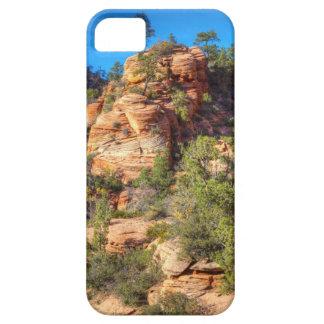 Eroded Grandeur iPhone SE/5/5s Case