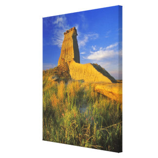 Eroded Monument in the Little Missouri Canvas Prints