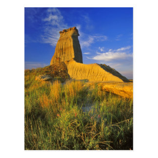 Eroded Monument in the Little Missouri Postcard