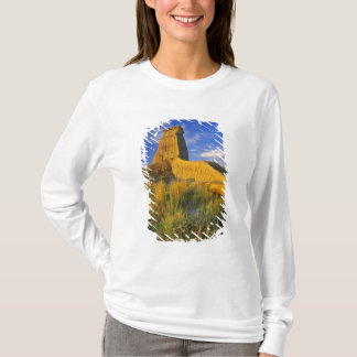 Eroded Monument in the Little Missouri T-Shirt
