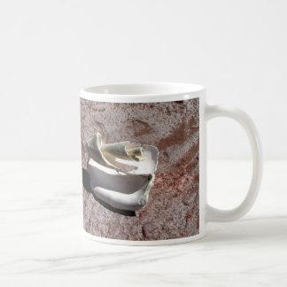 Eroded shell, Los Gatos anchorage Classic White Coffee Mug
